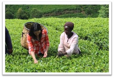 Purpose Tea founder Chi